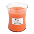 Woodwick Candle Medium - Dreamsicle Daydream